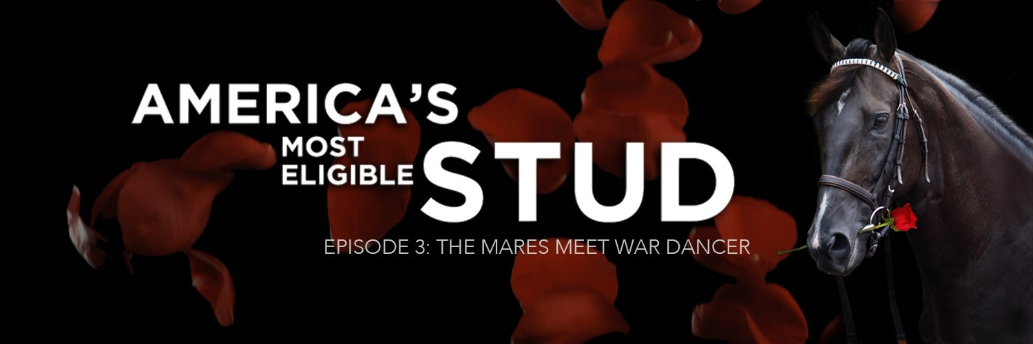 EPISODE 3: THE MARES MEET WAR DANCER