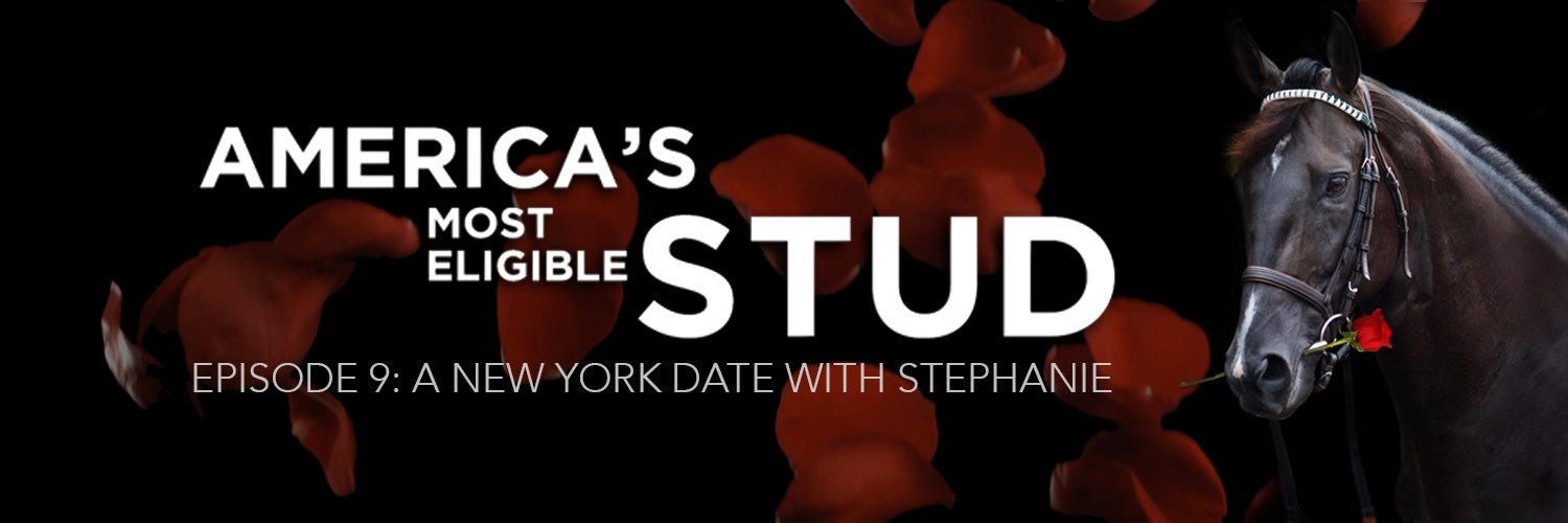 EPISODE 9: A NEW YORK DATE WITH STEPHANIE