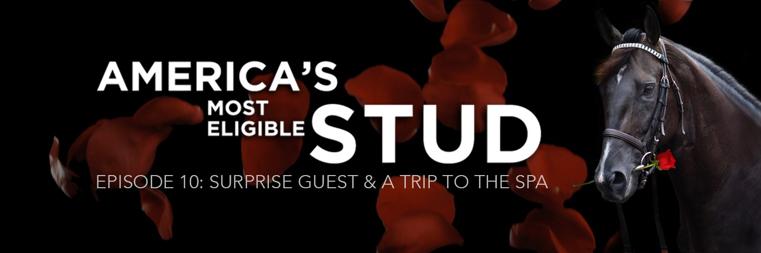 EPISODE 10: SURPRISE GUEST & A TRIP TO THE SPA