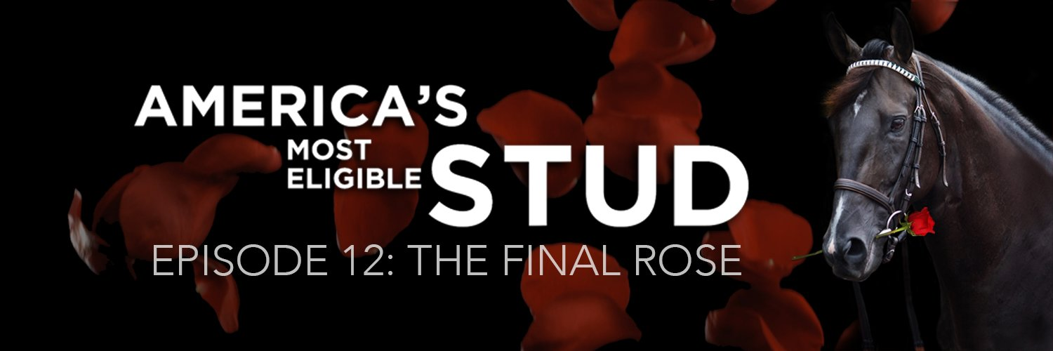 EPISODE 12: THE FINAL ROSE